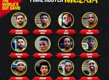 FIBA World cup: Diogu, Aminu, Okogie, Jordan top D'Tigers 12 man list
