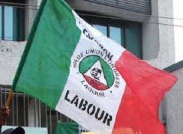 2019 Workers day celebration: Labour holds Thanksgiving service in Asaba