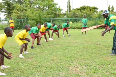 Cricket: ICC explains how Nigeria can catch up with South Africa, Zimbabwe, others
