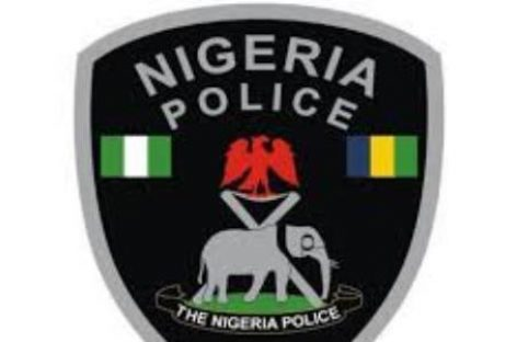 COVID-19 Pandemic: IGP urges Nigerians to beware of scammers