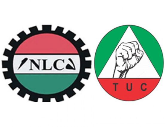 Fuel Price, Electricity Tariff: No more strike! Labour 'chickens' out