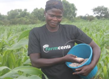 Farmcenta says 'digital agriculture' is way forward as firm marks 2yrs in Nigeria's agric value chain