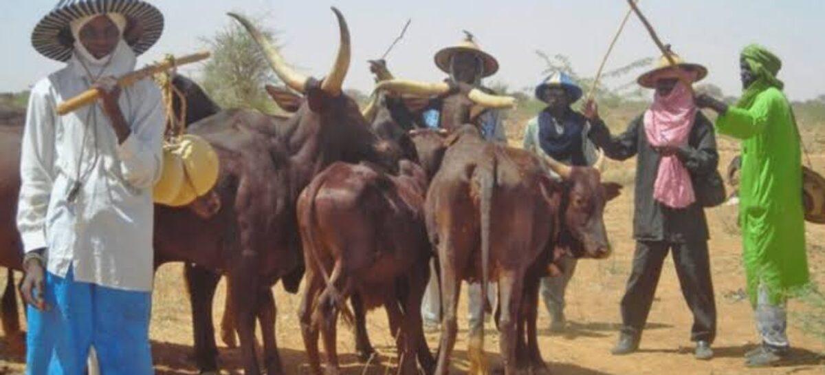 (Opinion) ITS TIME TO HALT MIYETTI ALLAH'S PLOT TO DESTABILISE NIGERIA