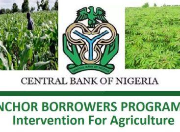 Anchor Borrower Programme: Enugu AFAN decries alleged late supply of farm inputs